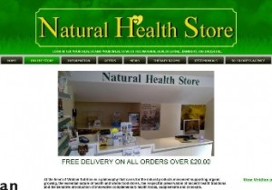 Natural Health Store SEO results