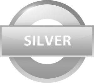 Silver CMS website design package